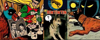 Dynamic Dogs in Comic Books or, How Comic Books Went to the Dogs