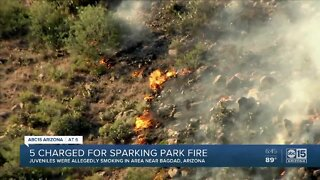 Five charged for sparking 'Park Fire'