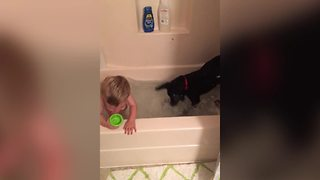 Cute Puppy Takes A Bath