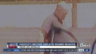 Stephen Paddock's brother had bizarre behavior in California - Video