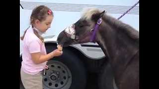 Young Girl Shares Her Ice Cream With Horse - Video