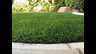 Thinking about installing artificial grass? The pros and cons