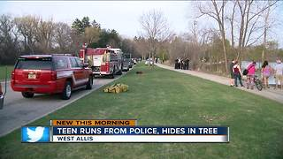 Teen hides from West Allis Police in tree - Video