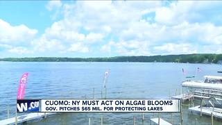 State, Chautauqua Co. stepping up fight against algae blooms - Video
