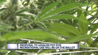 Michigan voters to decide on legalizing recreational marijuana