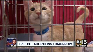 Free pet adoptions: MCACC hosts 'Empty the Shelter' event on Saturday - Video