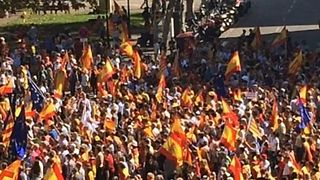 Rallies in Support of Spanish Unity Continue in Barcelona - Video
