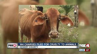 Man faced with 144 animal cruelty charges