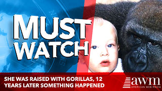 She Was Raised With Gorillas, 12 Years Later Something Incredible Happened - Video