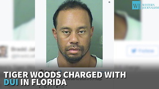 Tiger Woods Charged With Dui In Florida - Video