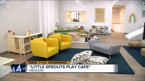 """""""Little Sprouts Play Cafe"""" to open in Mequon"""