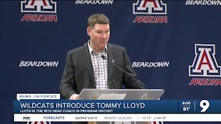 Wildcats introduce Tommy Lloyd
