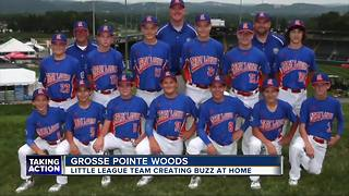Grosse Pointe Woods little league team creates buzz at home