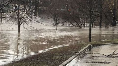 Roads Flood as Rainfall Warning Issued to Southern Ontario