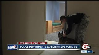 Police departments exploring GPS for K9 officers - Video