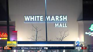 Seven teens and two adults arrested for disturbance at White Marsh Mall - Video