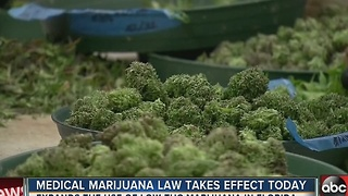 New medical marijuana law takes effect Tuesday - Video