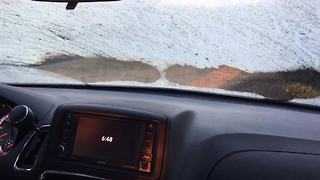 """""""Dogs vs. Windshield Wipers 
