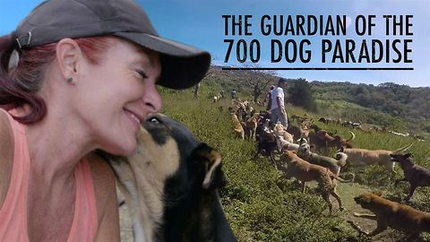 The woman behind the tropical dog paradise