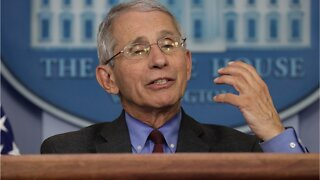 Fauci: Chances Of Highly Effective Vaccine 'Not Great'