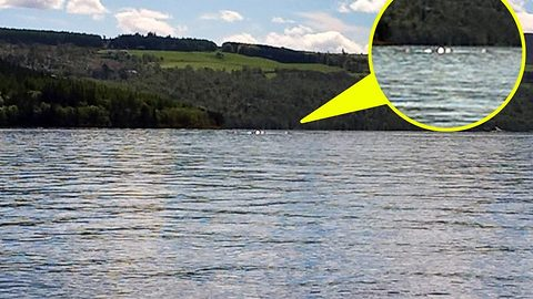 Could it be nessie? Schoolgirl captures mysterious footage of something long and thin splashing around in Loch Ness