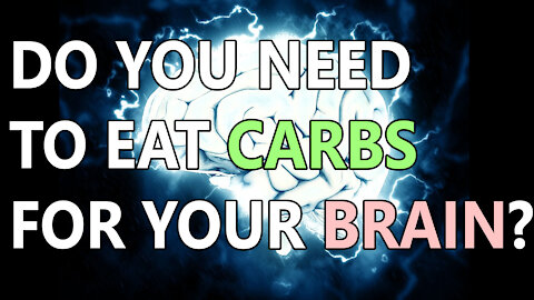 Do Our Brains Need Carbs?
