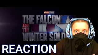 "First Time The Falcon and The Winter Soldier Trailer Reaction ""We Are Comics"""