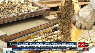 Federal regulations change how beekeepers get antibiotics for bees - Video