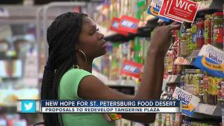 St. Pete Receives 6 proposals for Tangerine Plaza