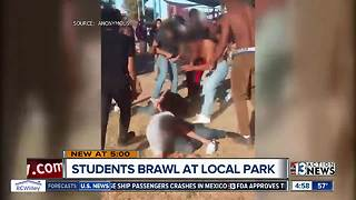 Video shows group of teens fighting in park - Video