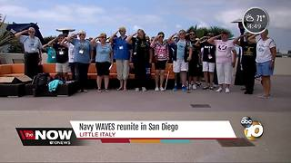 Navy WAVES reunite in San Diego - Video