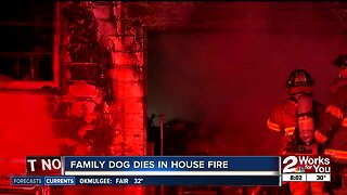 Family dog dies in house fire