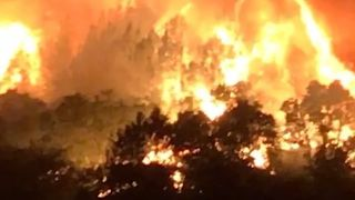 California Governor Asks Trump for Major Disaster Declaration as Wildfires Grow - Video