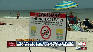 High bacteria levels detected in waters around Naples Pier - Video