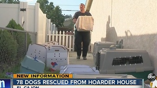 78 dogs rescued from hoarder house - Video