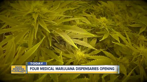 4-month delay comes to an end as first patients buy medical marijuana at 4 dispensaries
