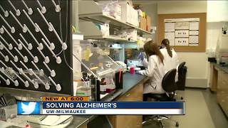 UWM researchers work toward Alzheimer's cure
