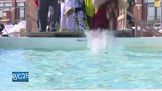 Hundreds plunge for Special Olympics at Lambeau Field