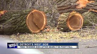 Tree trimmer dies after nearly 50 foot fall - Video