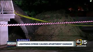 Lightning strikes causes tree to topple over on apartment complex - Video