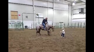 Horse incredibly plays with little girl best friend