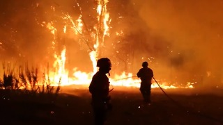 Volunteers Help Battle Deadly Portuguese Wildfires - Video