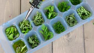 How To Freeze Your Fresh Herbs - Video