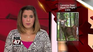 Deer to be hunted, tested for disease in Lansing - Video