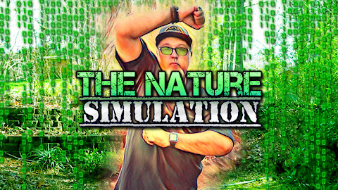 Dreaming of the Nature Simulation | Mother Earth