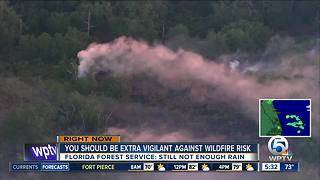 Florida Forest Service warns of fire danger risk in St. Lucie County - Video