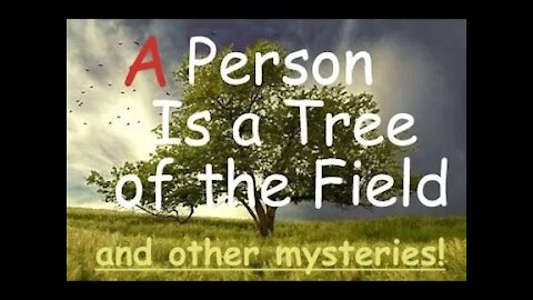 """""""A Person is a Tree of the Field"""" and other Metaphors"""