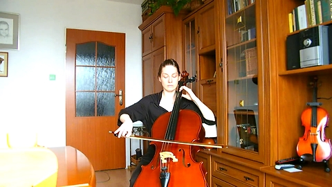Interpretation of the work Nobuo Uematsu on cello solo