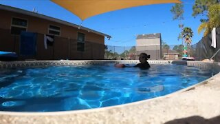 Mother encourages parents to get swim lessons with increase in child drownings during pandemic