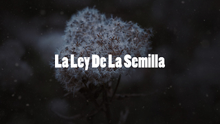 La Ley De Las Semillas - Video
